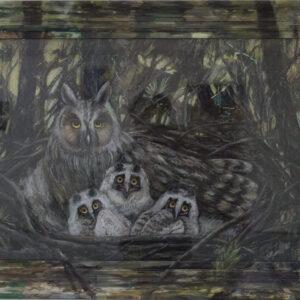 Jacqueline-Lamme-Ransuil-1_Long-eared-owl-@-Breed-Art-Studios