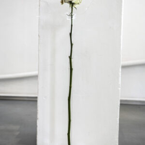 Il Respiro del'Arte Ed. II Breed Art Studios Amsterdam - Luisa Mazza
